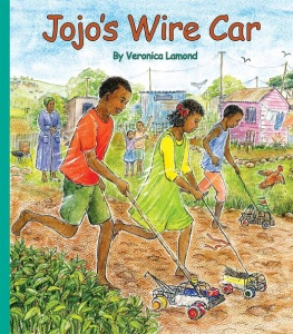 Jojo's Wire Car Cover