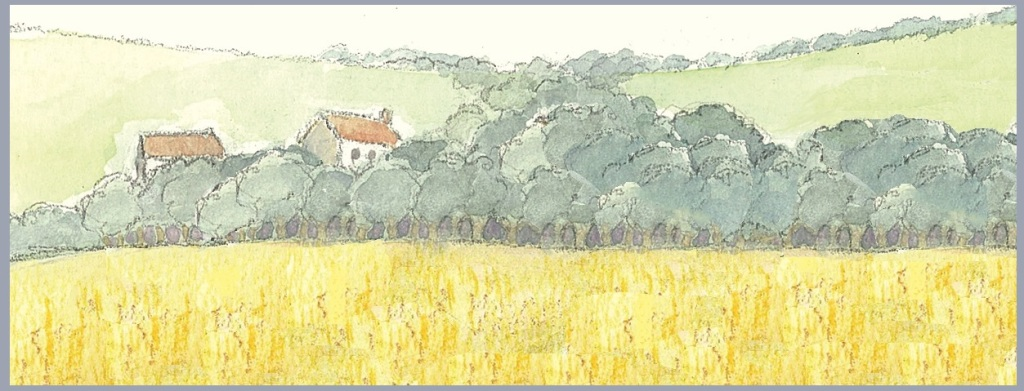 This image has an empty alt attribute; its file name is yellow-fields-and-houses-crop-1.jpg